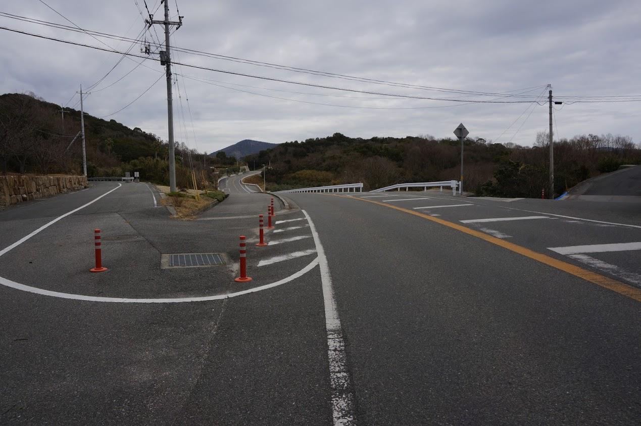 小豆島 香川県道254号線沿いオリーブの森