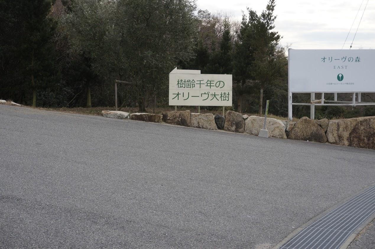 小豆島 香川県道254号線沿いオリーブの森入口