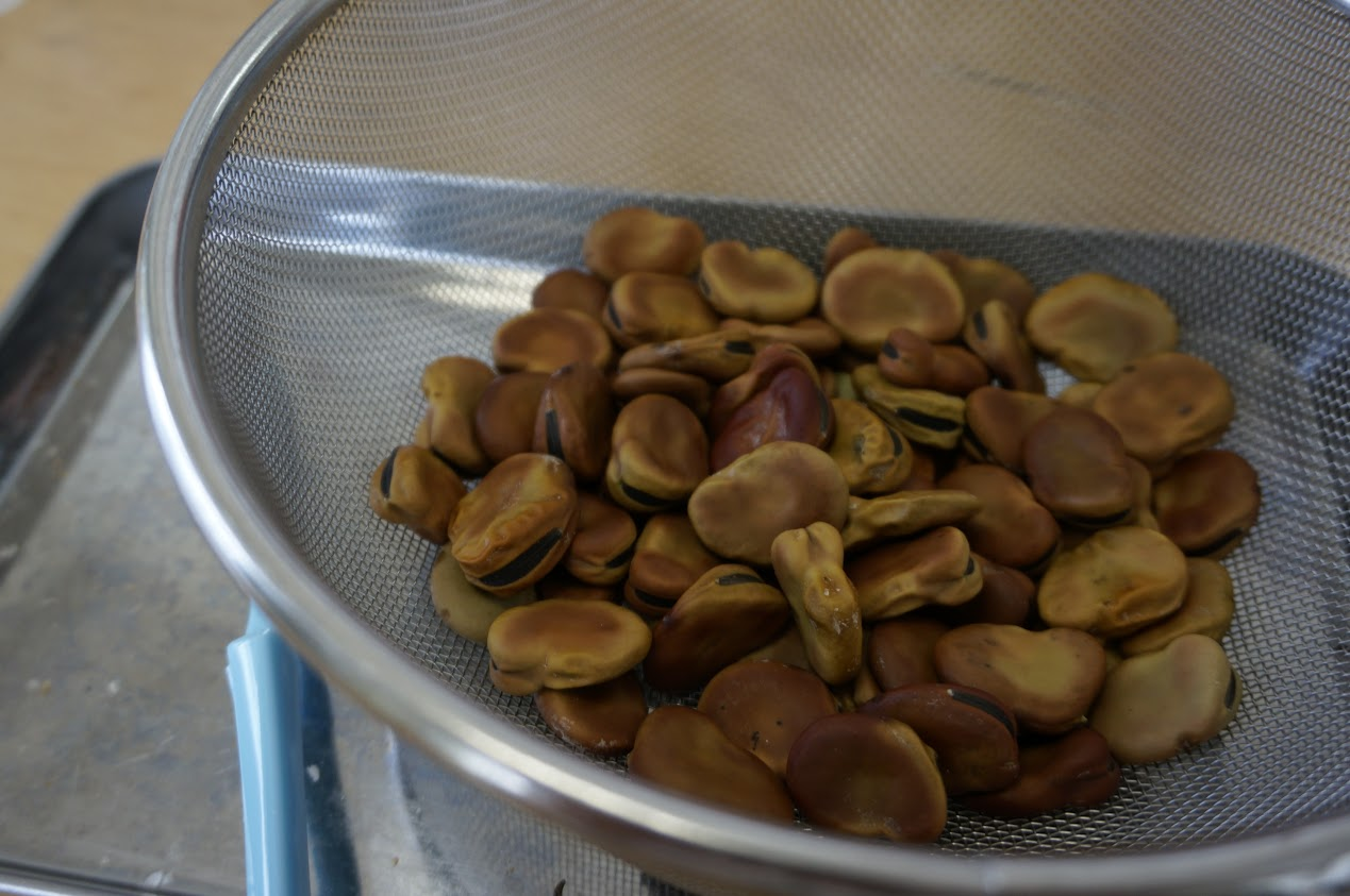 乾燥そら豆の白いところを取り除いた