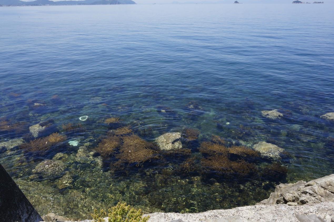 うずしおロマンチック海道彫刻公園の沿岸