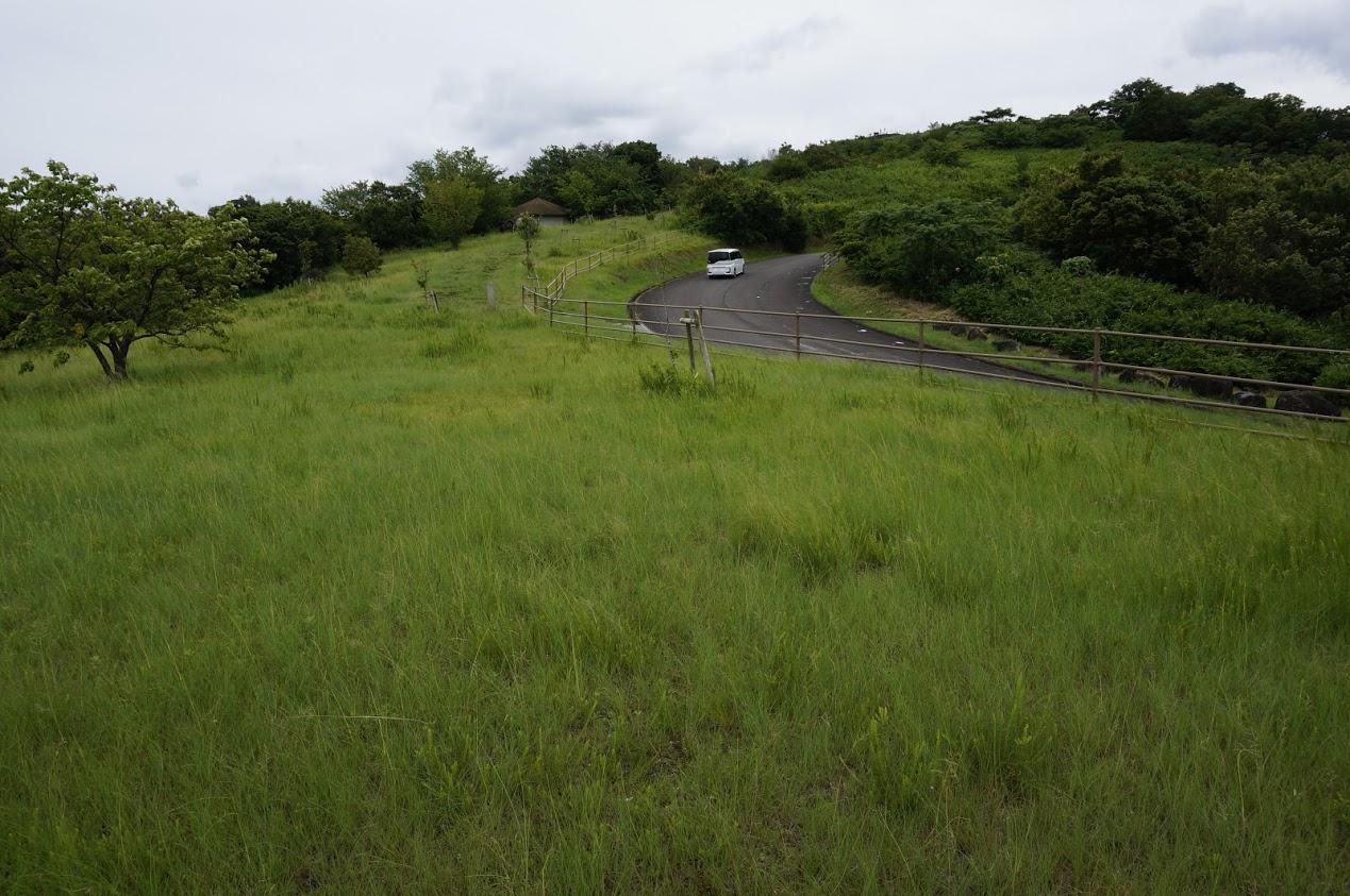 大串狼煙場跡の前の道路