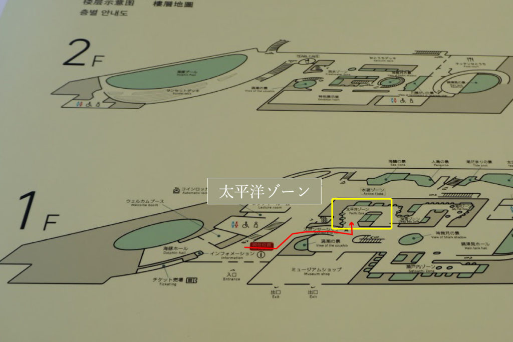 四国水族館 太平洋ゾーン