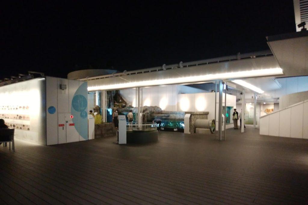 四国水族館 淡水ゾーン