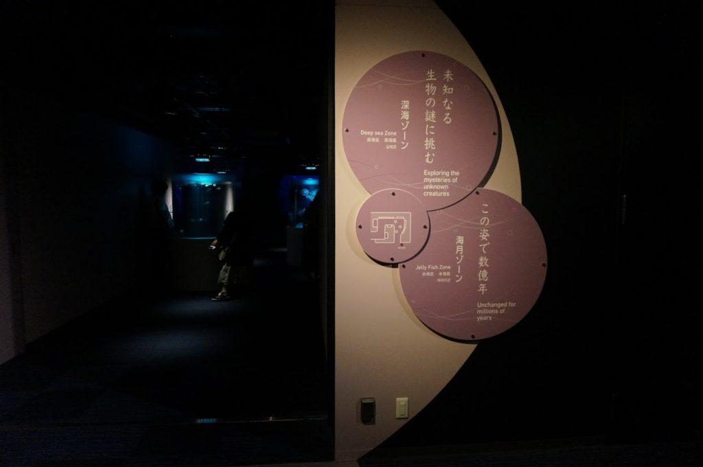 四国水族館 深海ゾーン 海月ゾーンの出入口
