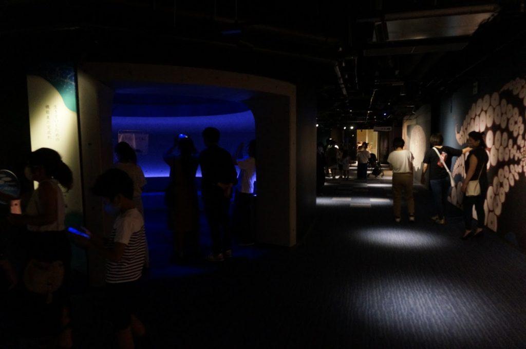 四国水族館 神無月の景の前