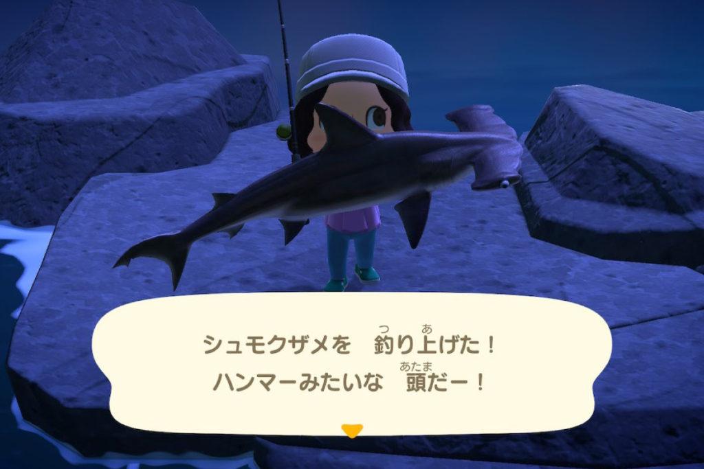 あつ森 シュモクザメを釣り上げた!