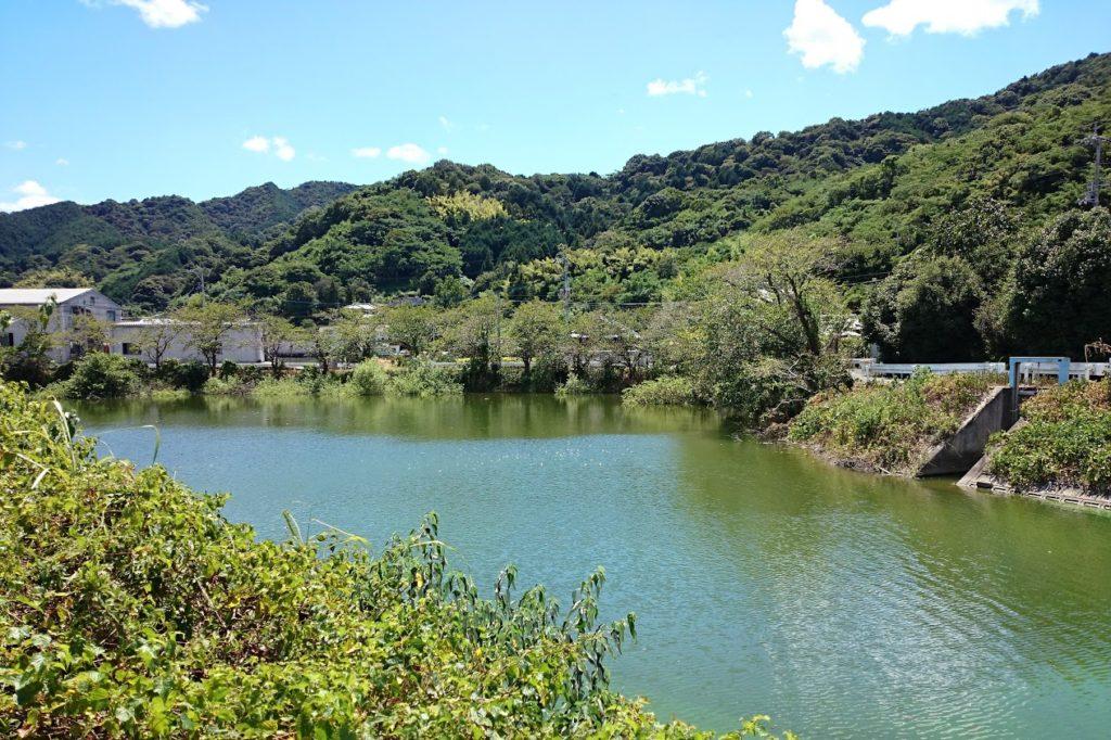 井関池 県道の西側