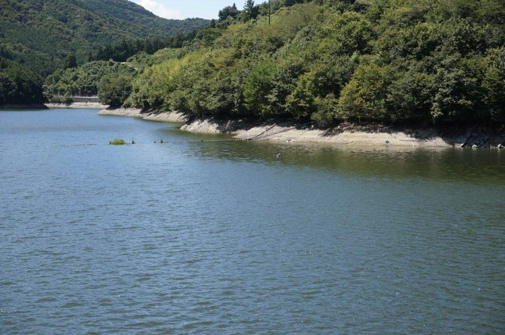 豊稔池ダム 水位がやや下がっている