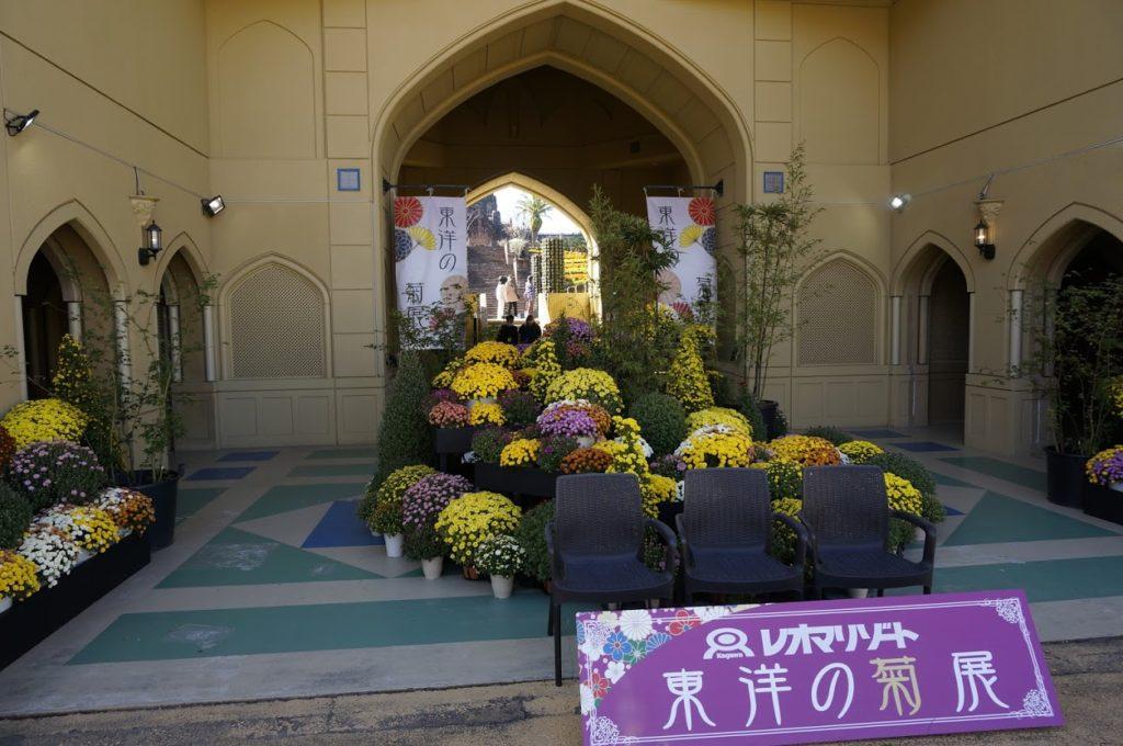 レオマオリエンタルトリップ東洋の菊展