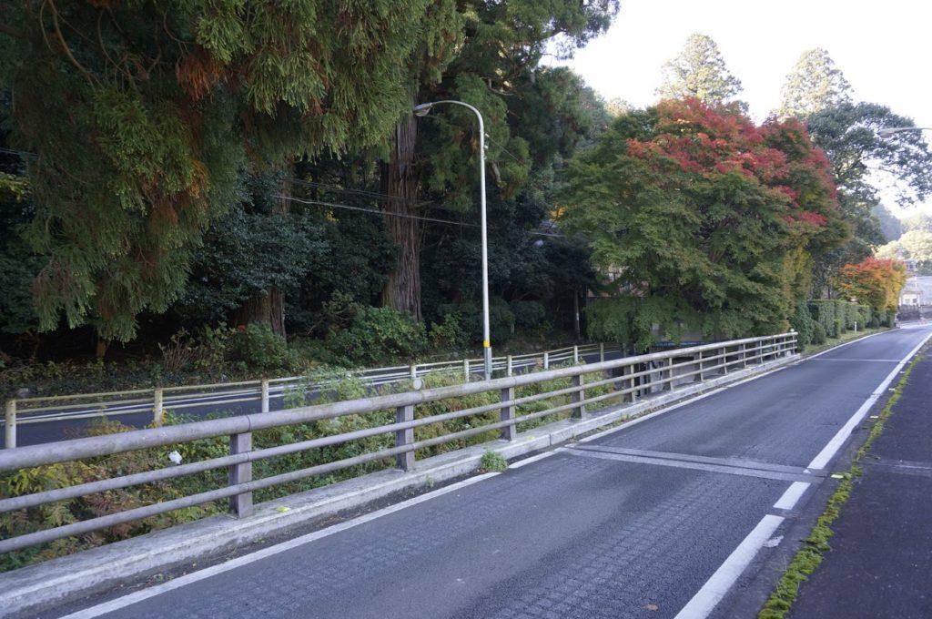 讃岐十景天川神社三本杉橋