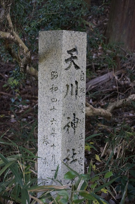 自然愛護区指定地天川神社社叢昭和46年10月琴南町