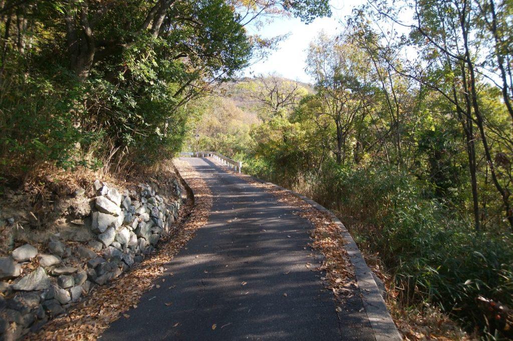 洞雲山への道