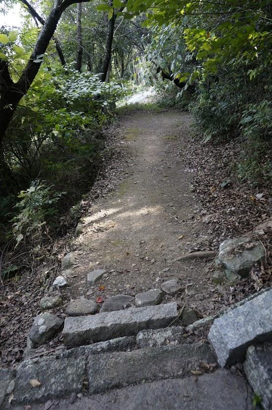 讃岐十景汐木山荒魂神社鳥居脇の道