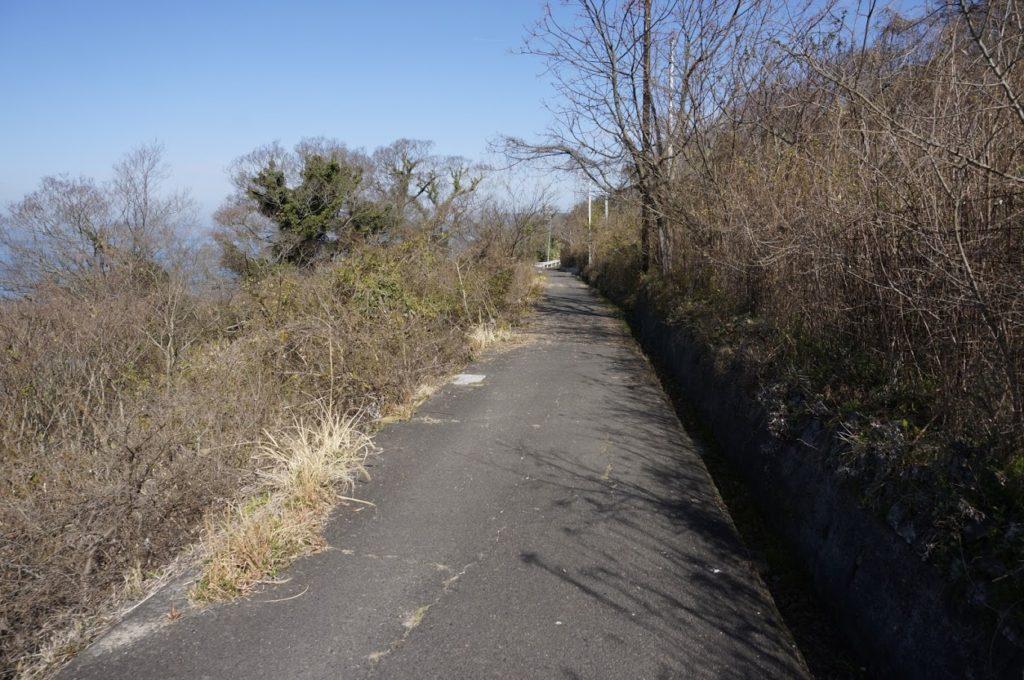 男木島水仙郷への道