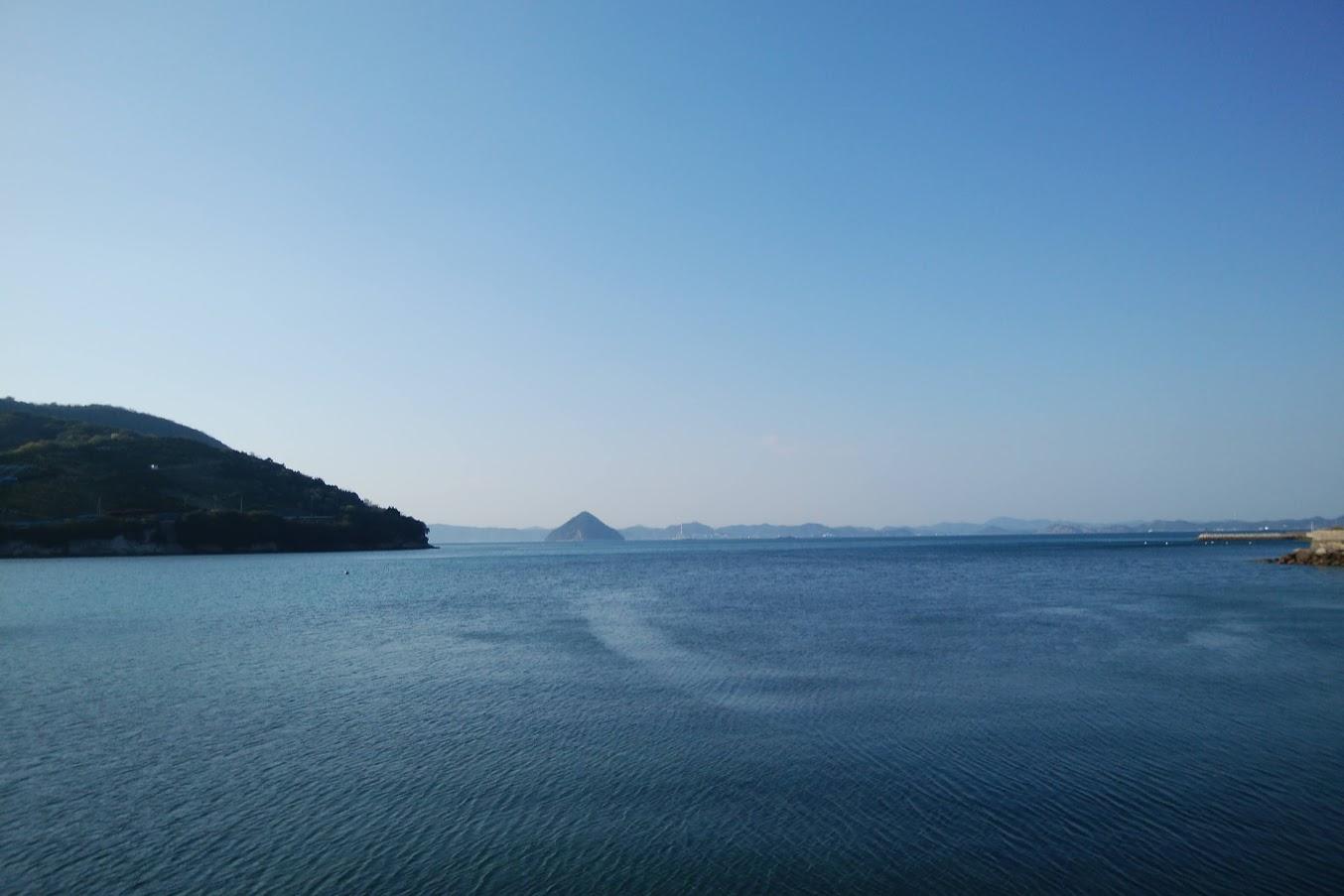 亀水バラ園から見る亀水湾