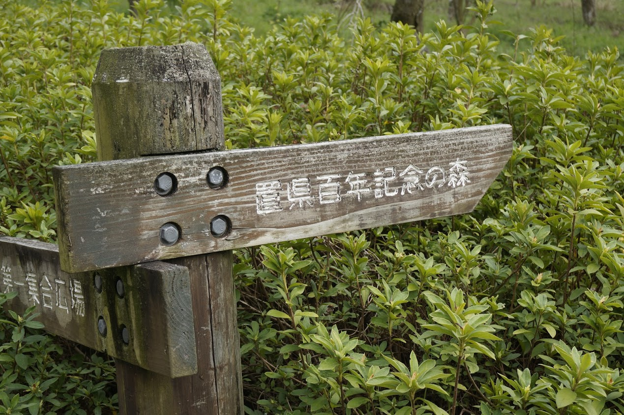 満濃池森林公園芝生広場置県百年記念の森