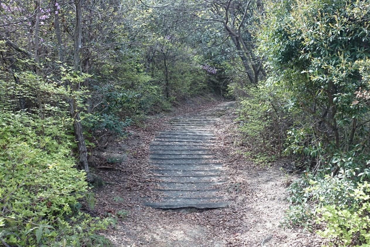 山上神社から登る道