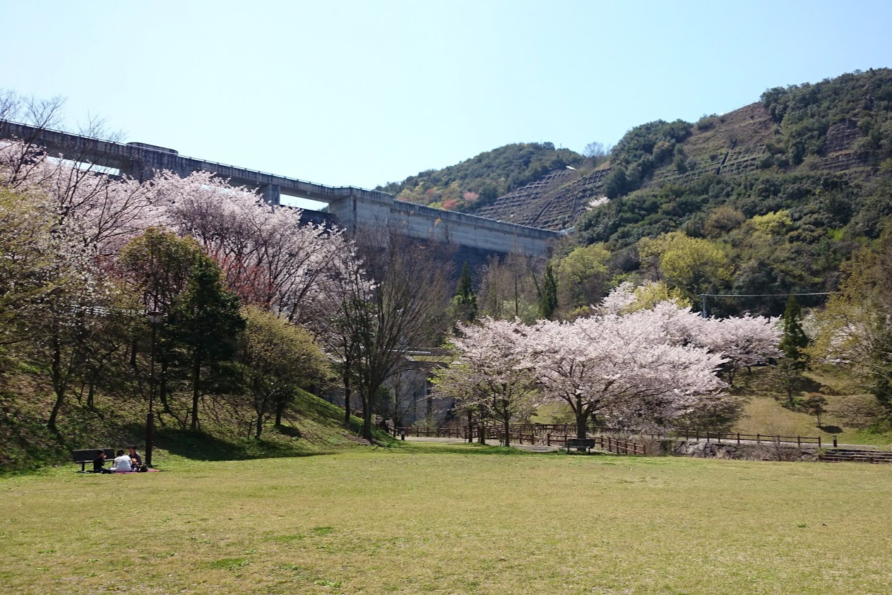 門入ダム前の花の広場