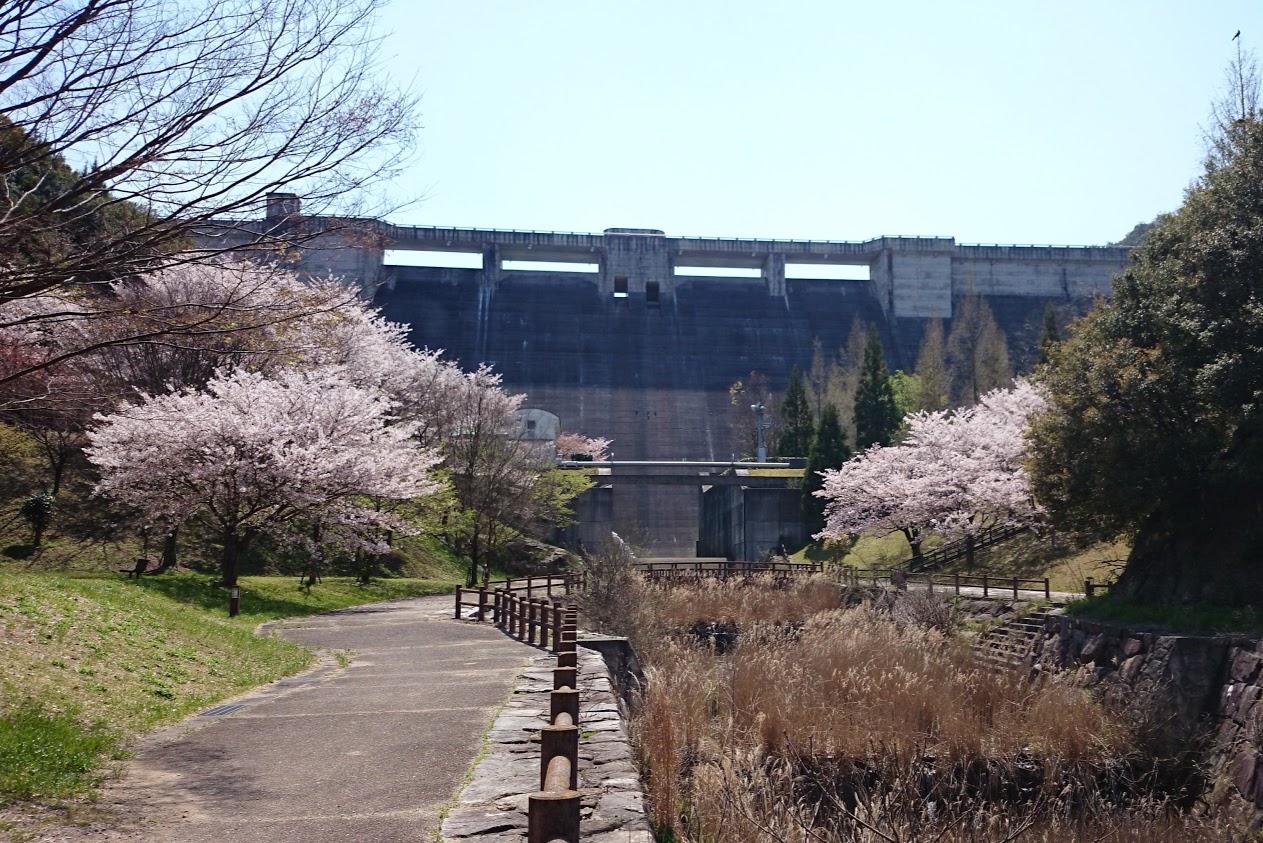 門入ダム花の広場