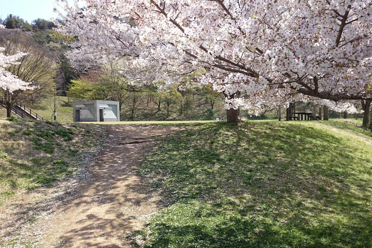 門入ダム花の広場へ続く道