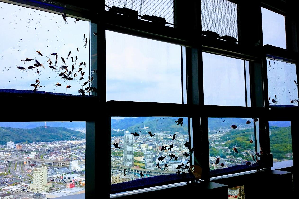 宇多津ゴールドタワーソラキン天空5F