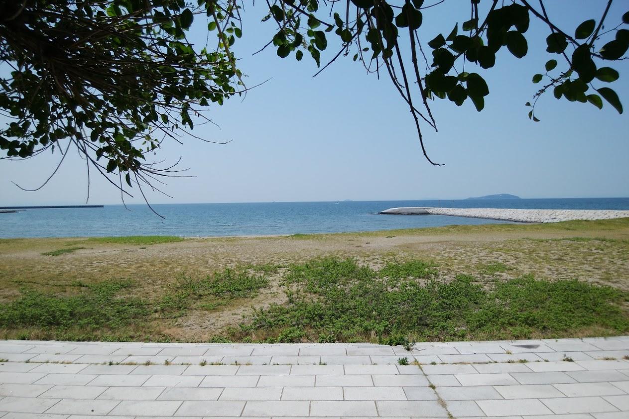一の宮海岸北側の突堤