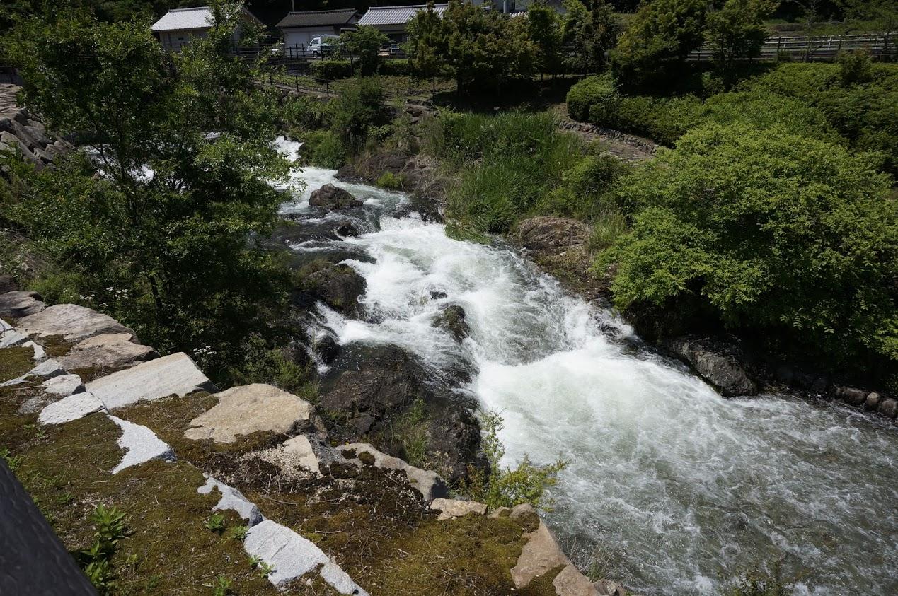ほたる見公園金倉川