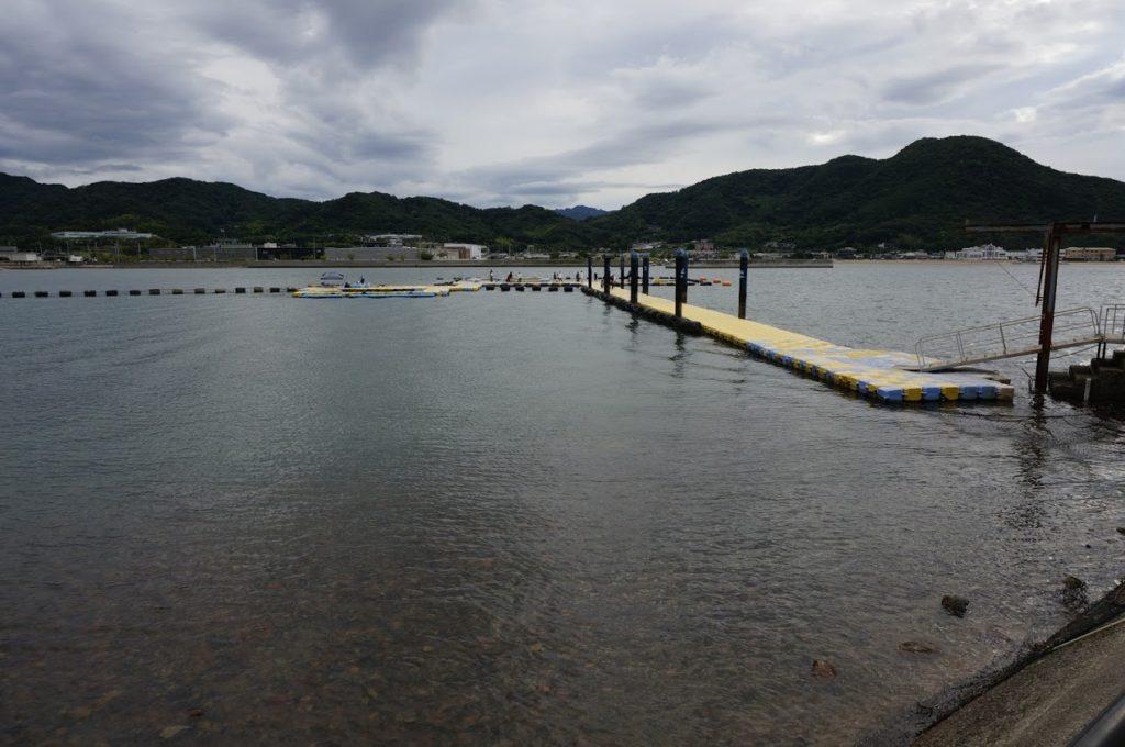 日本ドルフィンセンターのイルカプール