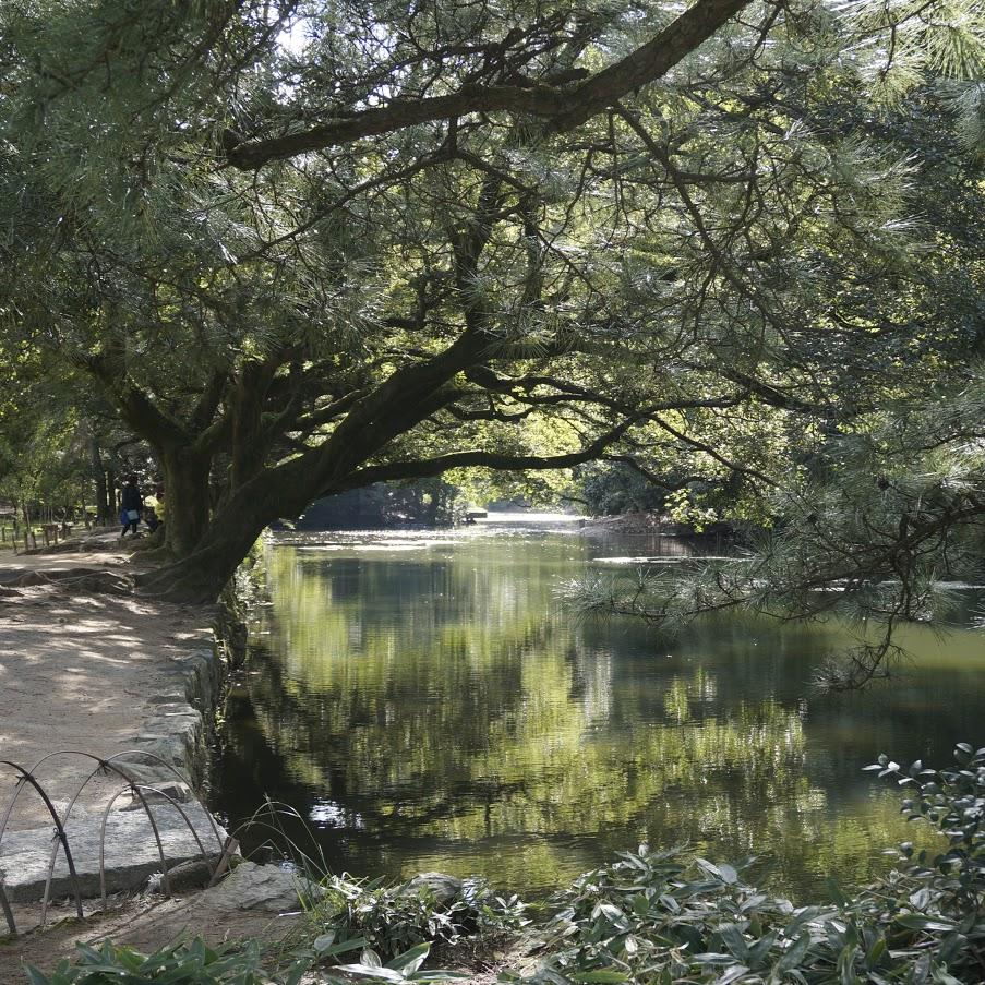 栗林公園の水辺