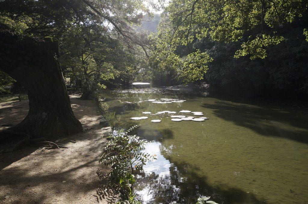 栗林公園 西湖