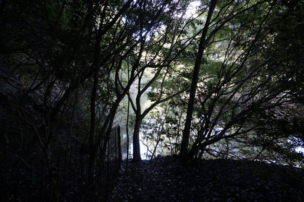 栗林公園 小普陀裏手