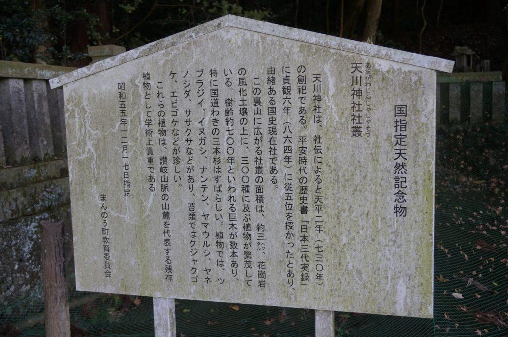 天川神社社叢の説明