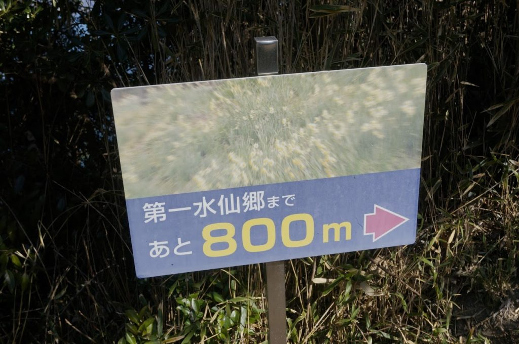 第一水仙郷郷まであと800m