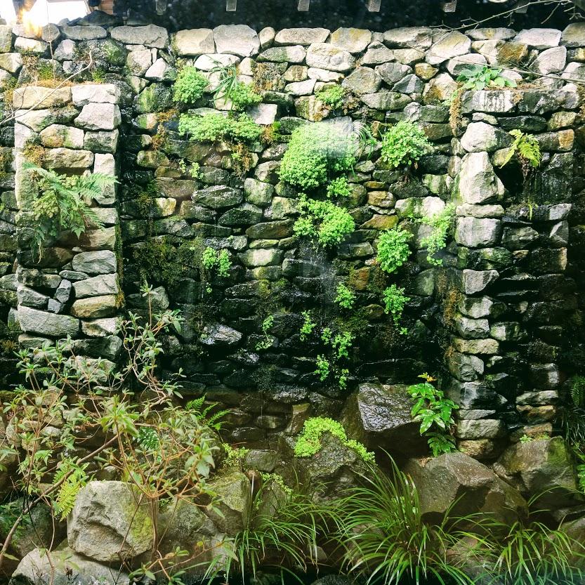 天水分あめのみくまりのお庭豊稔庭