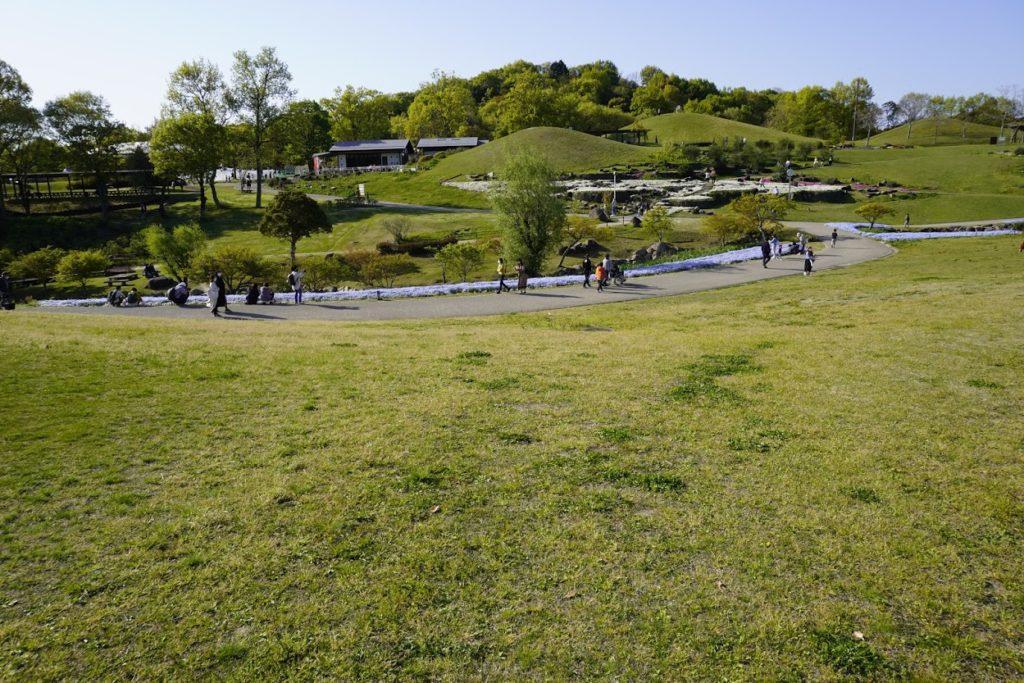 まんのう公園青龍の谷
