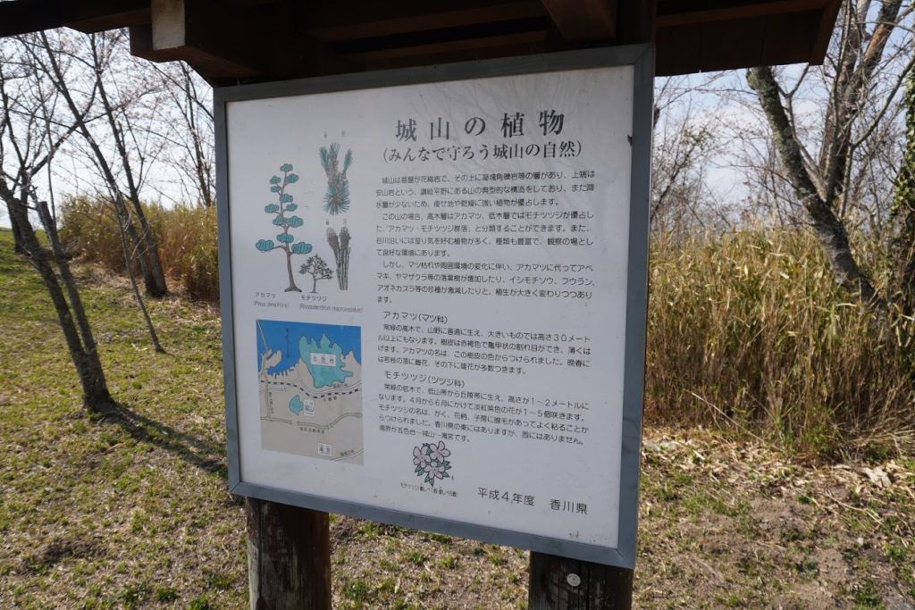 城山山頂園地 城山の植物の説明版