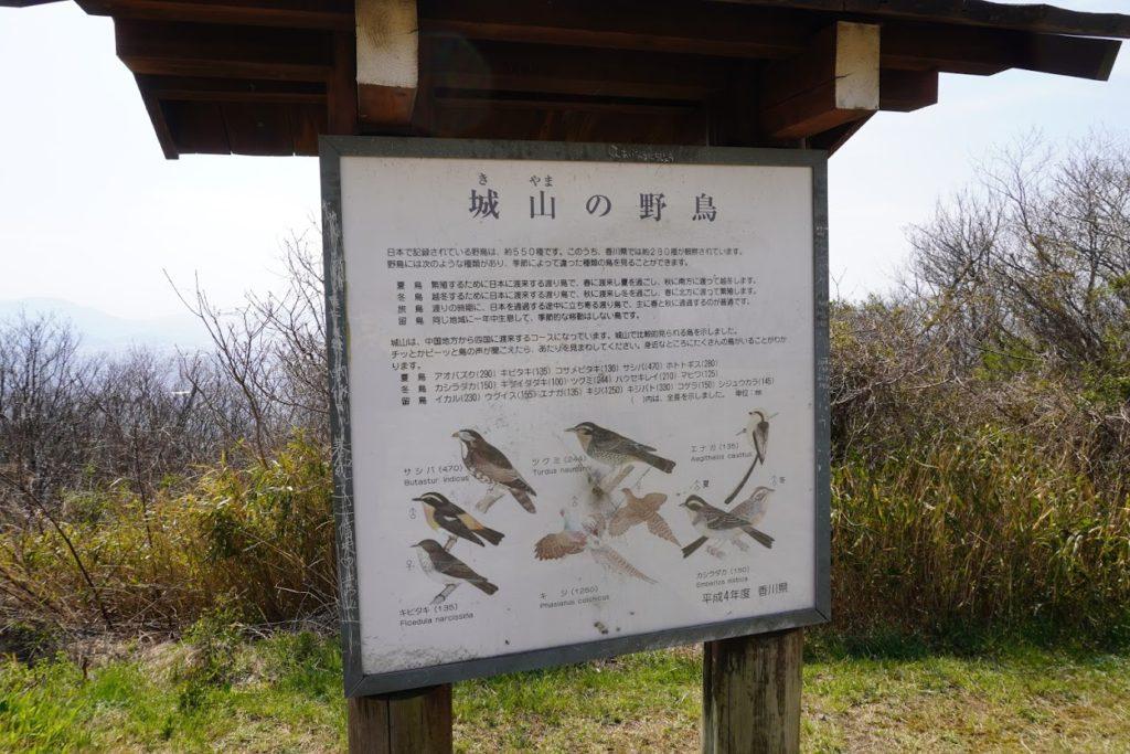城山山頂園地 城山の野鳥の説明版