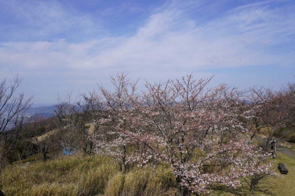 城山山頂展望台から五色台