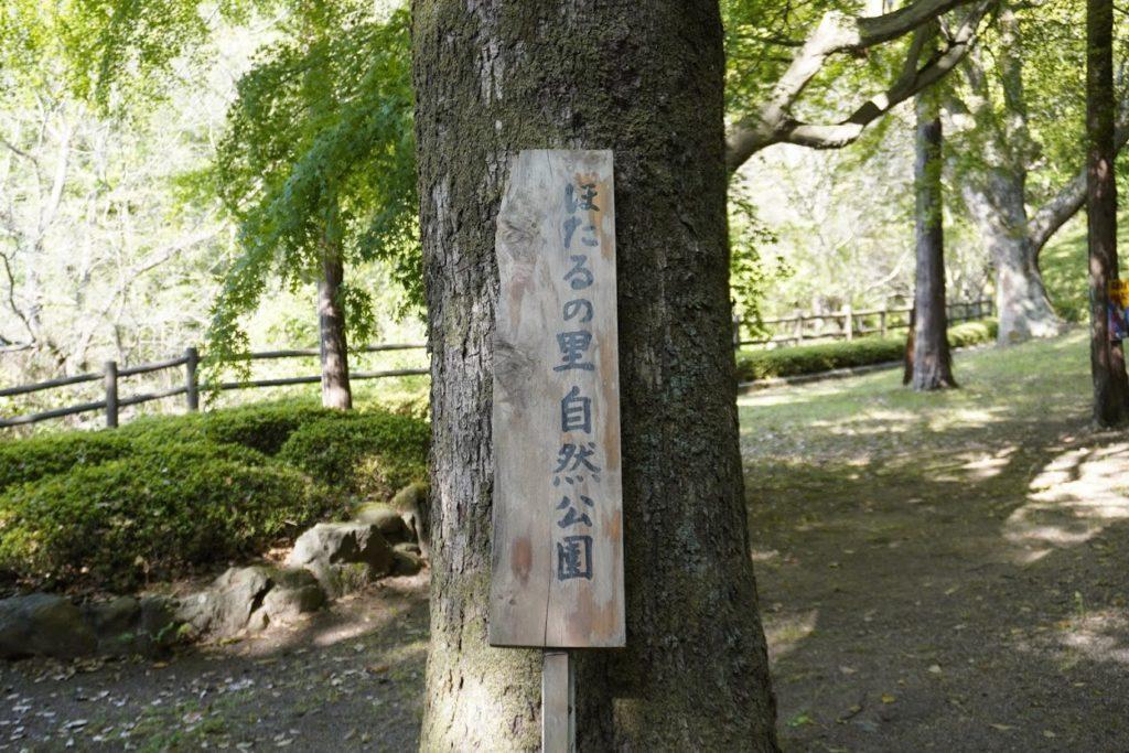 神谷神社の奥のほたるの里自然公園