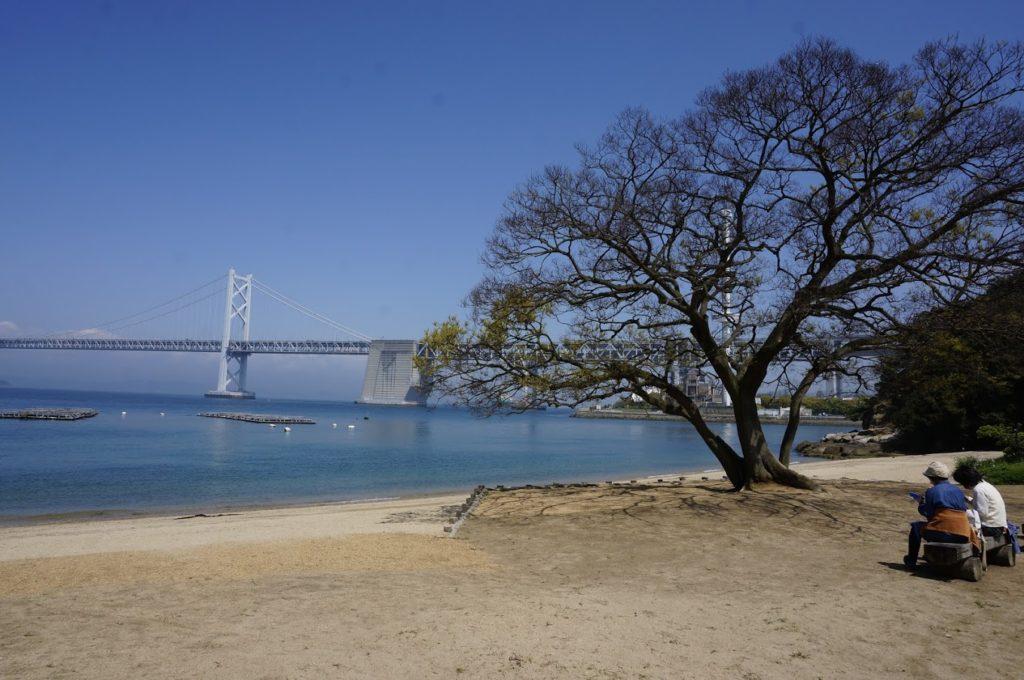 ナカンダ浜の榎(2016年4月)