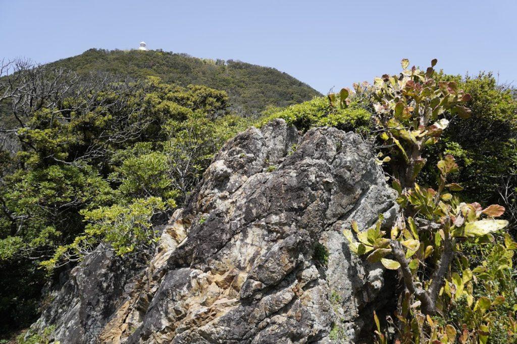 室戸岬灌頂ヶ浜駐車場からの遊歩道から室戸岬灯台