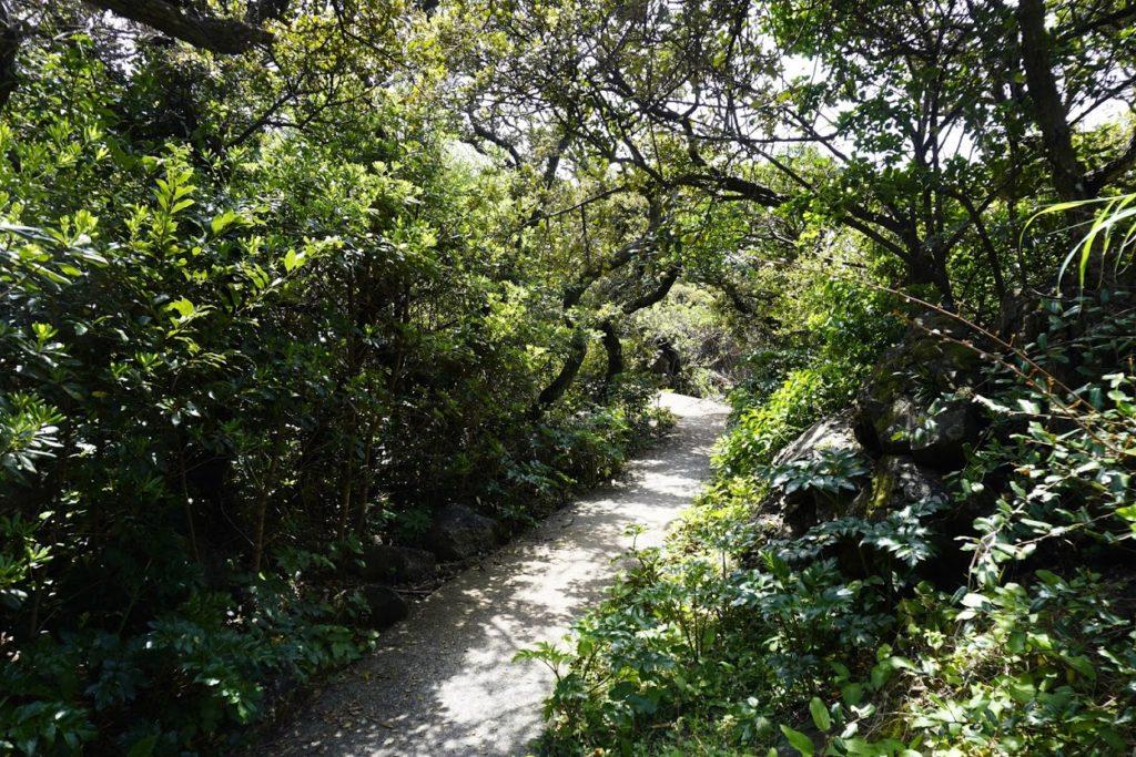 室戸岬灌頂ヶ浜駐車場からの遊歩道