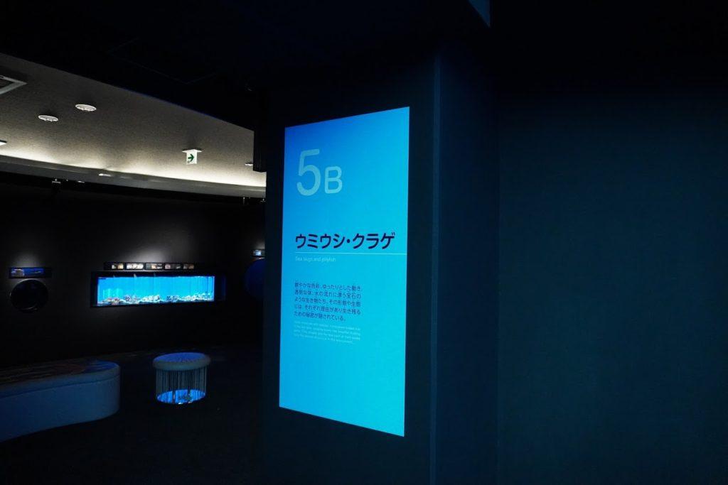 足摺海洋館5B ウミウシ・クラゲ