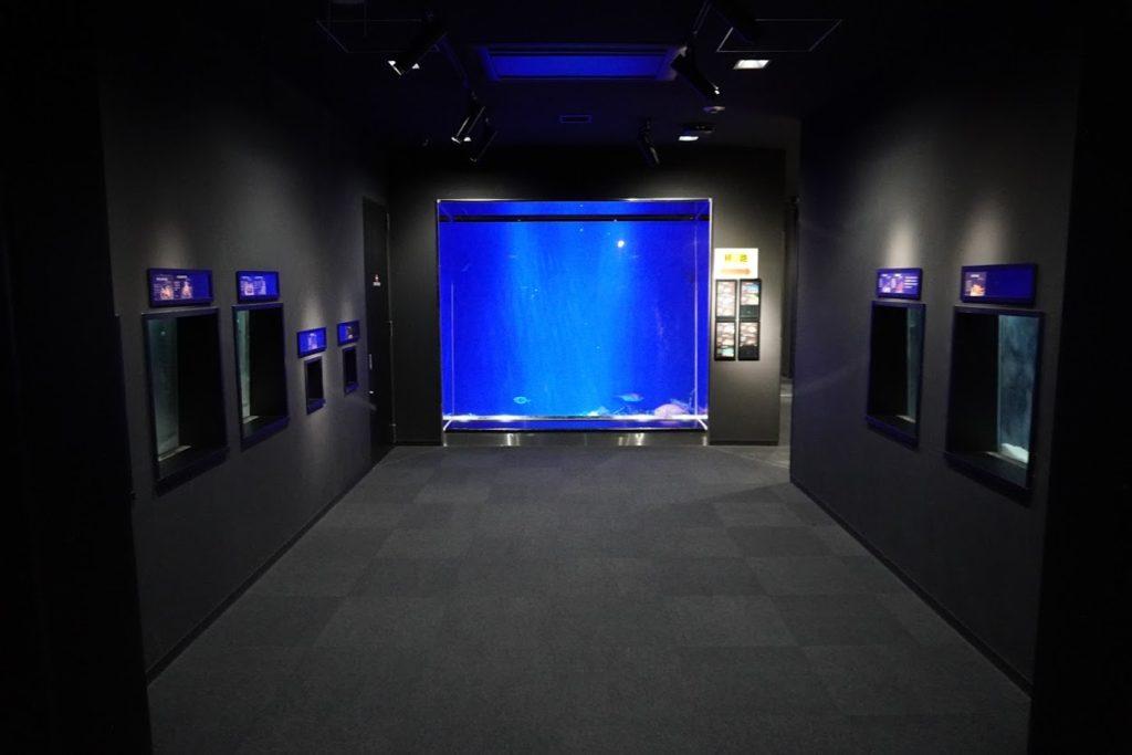 足摺海洋館 6深海