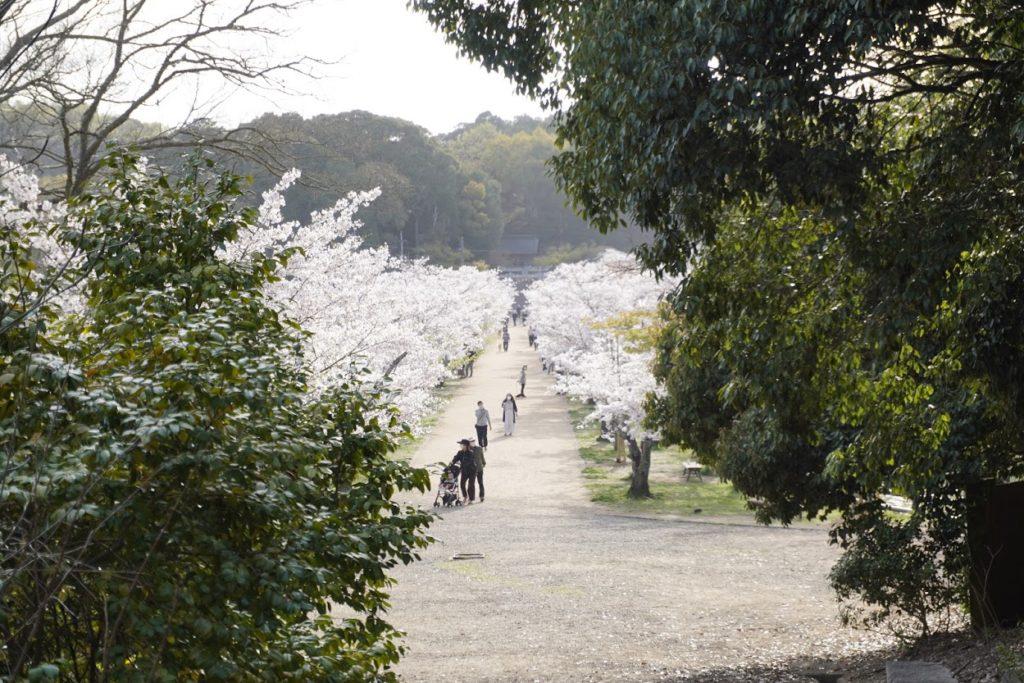 鶴亀公園宇佐神社御旅所