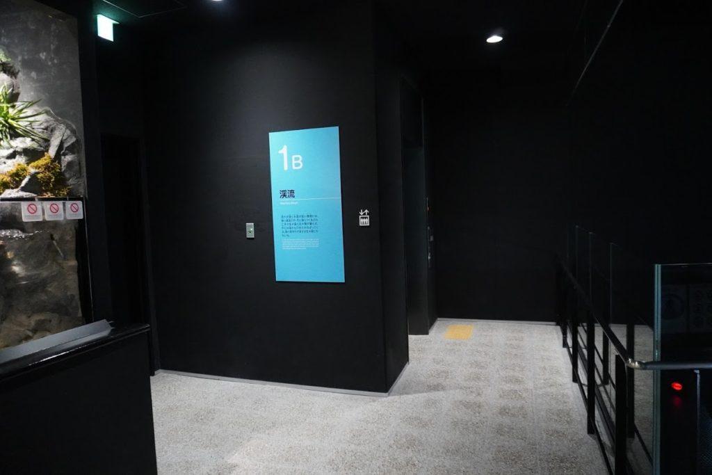 足摺海洋館SATOUMI 2階 1b渓流の展示
