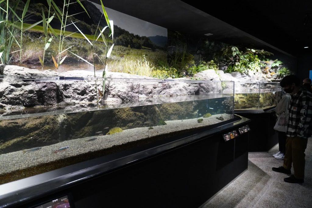 足摺海洋館SATOUMI 里山の展示