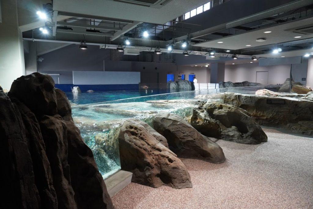 足摺海洋館SATOUMI 竜串湾大水槽 奇岩タッチングコーナー