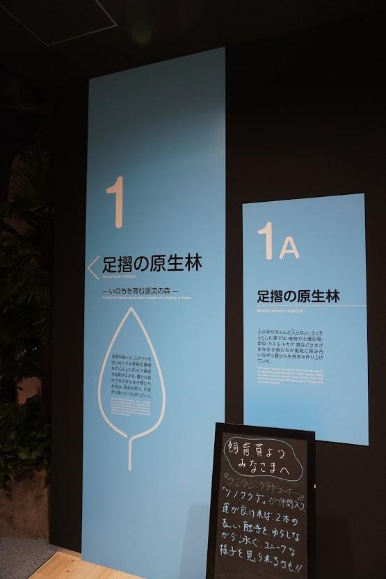 足摺海洋館SATOUMI 1階 足摺の原生林