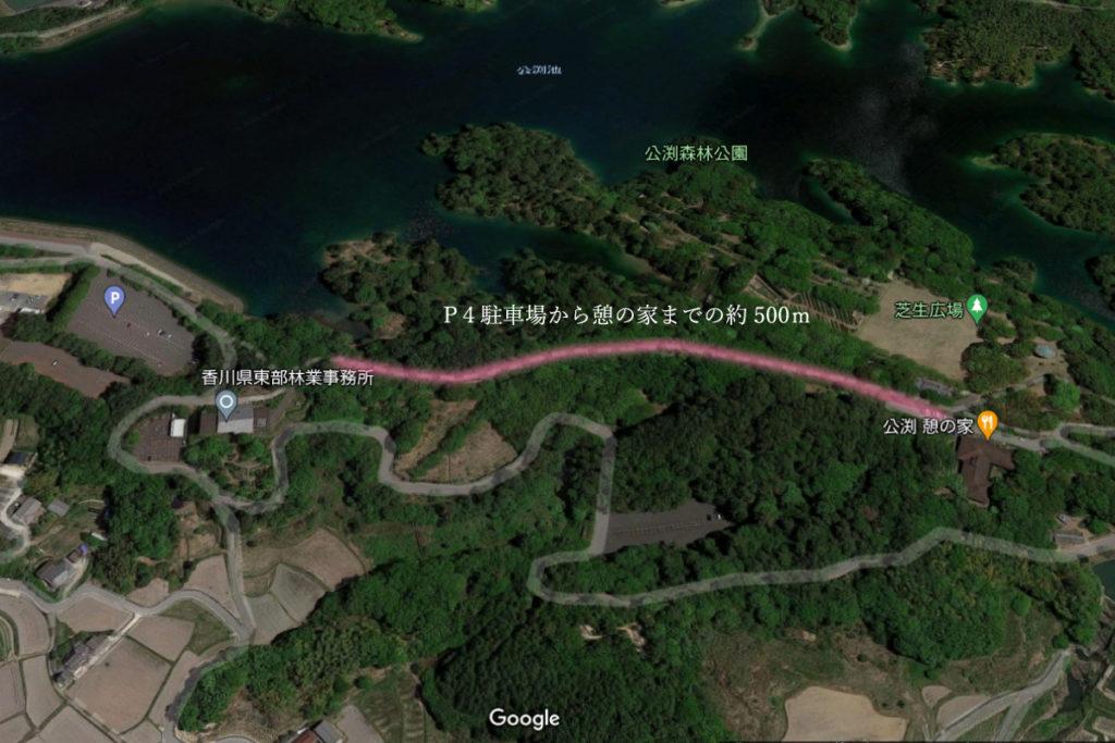 公渕森林公園桜並木の場所